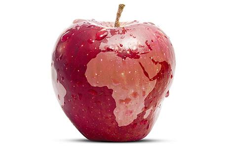 Beverage Translation Company World Map on Red Apple