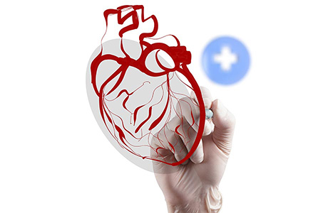 Medical Translation Company Icon with Hand Writing on Red Heart