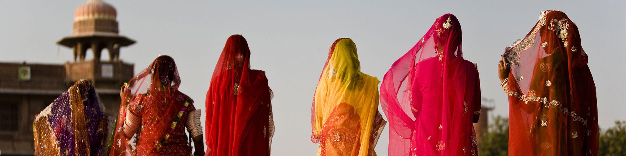 Oriya Ladies Multi Colour Saree